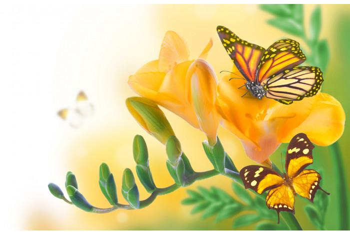 Модульная картина Бабочка на желтом цветке