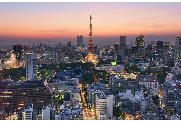 Модульная картина Токио Закат