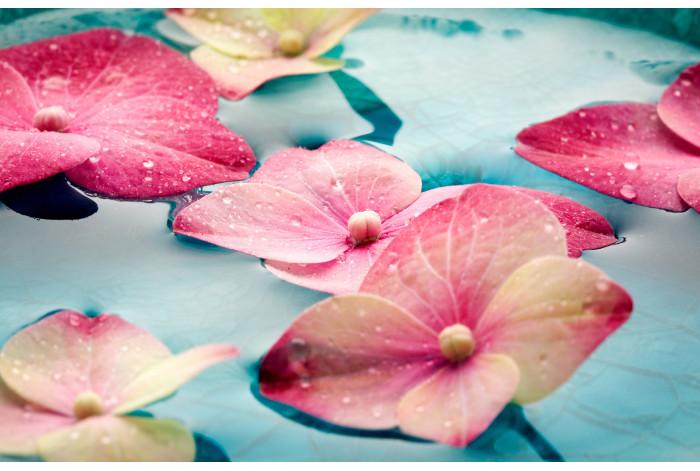 Модульная картина Цветы на воде