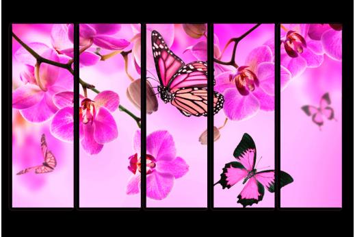 Модульная картина Орхидеи и бабочки