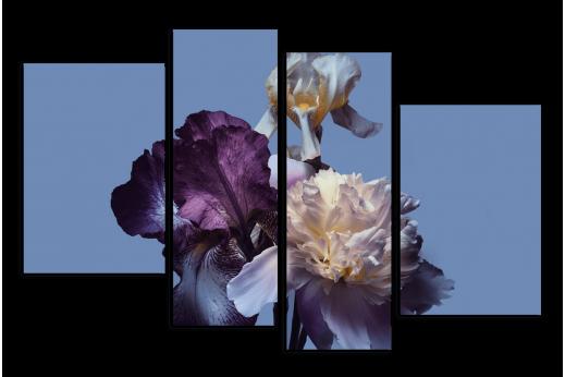 Модульная картина Тёмные ирисы