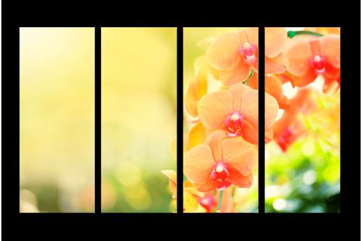 Модульная картина Оранжевые орхидеи