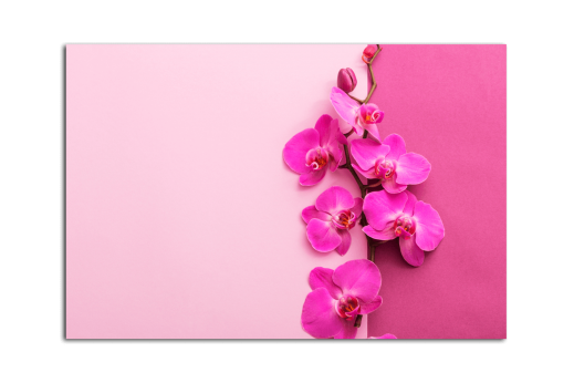 Картина Розовая веточка